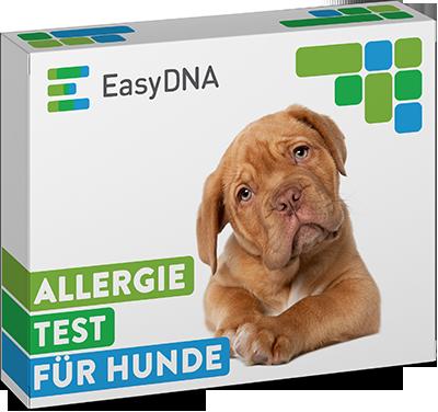 EasyDNA Hunde dna test erfahrungen