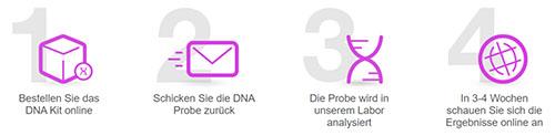 Myheritage DNA test prozess